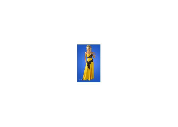 Фото вечерние платья, новосибирск.  Бальное платье напрокат новосибирск.